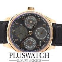 IWC Portoghese Perpetual Calendar Ardoise Dial  IW503404  T