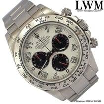 勞力士 (Rolex) Daytona 116509 Panda dial white gold Full Set