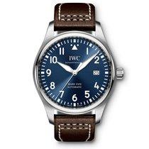 IWC Men's IW327004 Pilot Midnight Watch