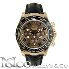 Rolex Daytona Everose Gold on Alligator Strap
