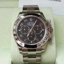勞力士 (Rolex) 116509 Daytona White Gold Black Dial 40mm [NEW]