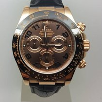 Rolex Cosmograph Daytona Everose -Full Set- 2014