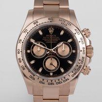 "Rolex Cosmograph Daytona Everose Gold ""Full Set"""