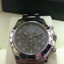 Rolex 116509 Daytona White Gold Grey Dial 40mm (NEW)