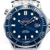 Omega Seamaster Professional Co Axial Chronometer neues...