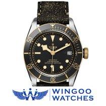 Tudor Heritage Black Bay S&G Ref. 79733N