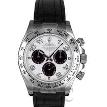 勞力士 (Rolex) Daytona Panda Dial/Leather - 116519