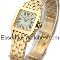 Cartier Santos Demoiselle Small Size in Rose Gold