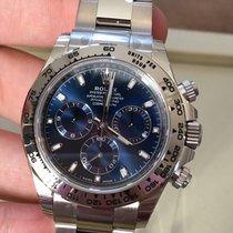 Rolex Daytona 116509 Blue