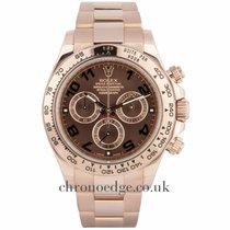 Rolex Daytona Chocolate dial 18ct Rose Gold  116505