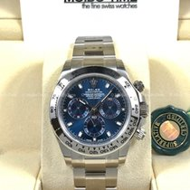 勞力士 (Rolex) 116509 Daytona White Gold Blue Dial 40mm [NEW]