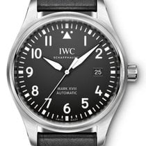 IWC Pilot's Men's Watch IW327001
