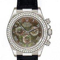 Rolex Daytona White Gold on Strap Unworn Mens Watch With Pave...