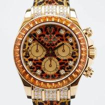 Rolex Daytona Leopard
