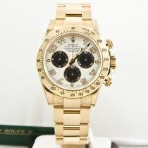 Rolex 40mm  Daytona Gold Watch 116528 Panda Dial