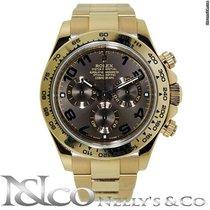 勞力士 (Rolex) Daytona - Everose Gold with Chocolate Dial