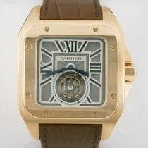 Cartier W2020019