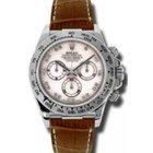 Rolex Cosmograph Daytona 116519 116519-MOPABR White Mother Of...
