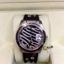 Rolex Datejust Royal Black Zebra 116199SANR WG Special Ed.