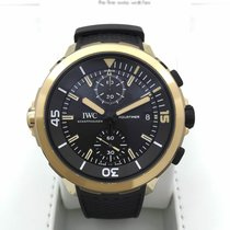 IWC Aquatimer Chronograph Bronze Edition Charles Darwin [NEW]