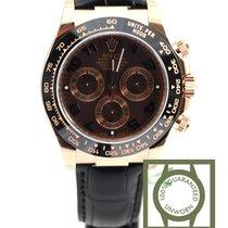 Rolex Daytona Rose Gold Leather black bezel chocolate dial NEW