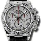 Rolex Daytona White Gold - Leather Strap 116519 mt