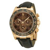 Rolex 116515 LNbr Daytona Everose Gold Leather Strap