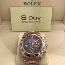 勞力士 (Rolex) 116505 Daytona Chocolate Dial