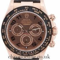 Rolex Daytona Cosmograph 18ct Rose Gold (2016)116515LN