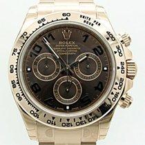 Rolex Daytona Everose