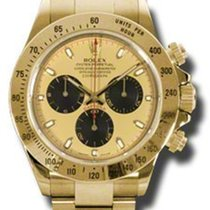 Rolex Daytona Yellow Gold - Bracelet 116528 pn